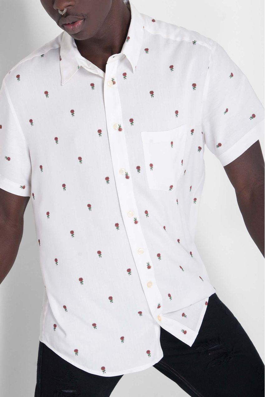 Camisa-Roses