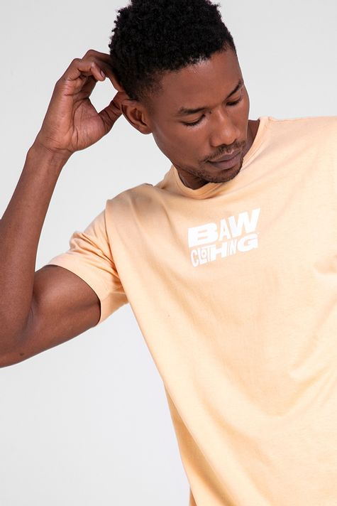 camiseta-fun-logo-papaya